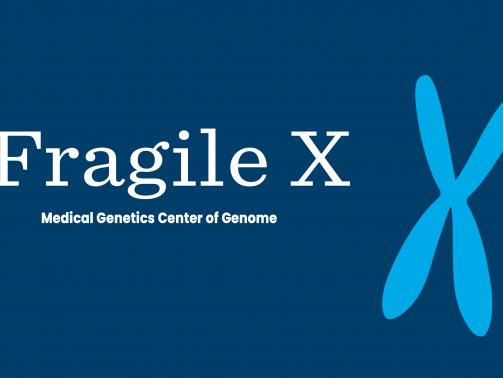 سندروم X شکننده یک بیماری ژنتیکی است. این بیماری به دلیل تغییرات در یک ژن است که دانشمندان آن را FMR1(Fragile X Mental Retardation1) نامیده اند. ژن FMR1 پروتئینی به نام FMRP (Fragile X Mental Retardation1 Protein) تولید می کند. این پروتئین برای رشد نرمال مغز مورد نیاز است. افراد مبتلا به سندروم X شکننده این پروتئین را نمی سازند. افرادی که به دیگر بیماری های مرتبط با X شکننده مبتلا هستند، در ژن FMR1 خود دچار تغییراتی شده اند اما معمولا مقداری از پروتئین را می سازند.