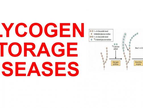 بیماری ذخیره گلیکوژن نوع 1 (به نام GSDI یا بیماری von Gierke هم شناخته می¬شود) یک اختلال ارثی است که در اثر تجمع گلیکوژن ایجاد می¬شود. تجمع گلیکوژن در اندام¬ها و بافت¬های خاص، مخصوصا در کبد، کلیه و روده کوچک موجب تضعیف توانایی این اندام¬ها برای عملکرد نرمال می¬شود.